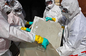 Nanaimo Lead Mold asbestos removal